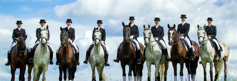 Aintree Dressage Image