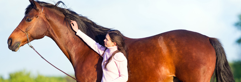 osberton horse trials image