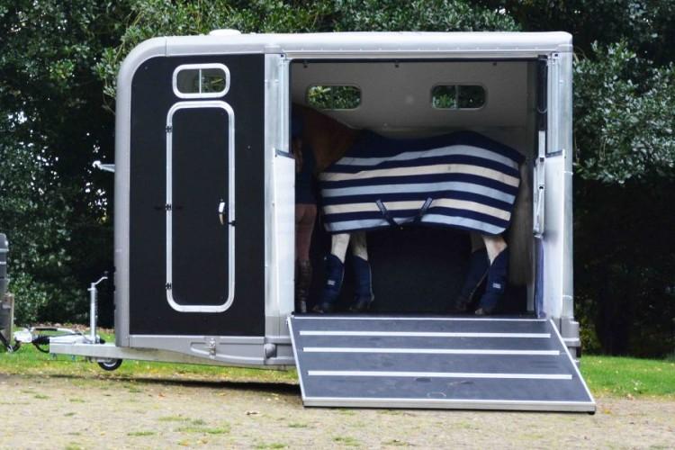 Horse inside trailer
